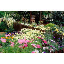 7 tips for gardening success