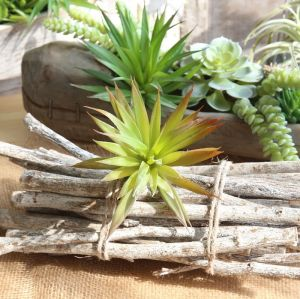 Artificial Dajian Leaf Indoor Plant Wall Micro Landscape Artificial Succulent Home Decor Office Decor