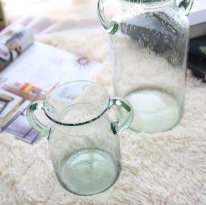Double Ear Bubble Glass Vase Floral Set Flower Arrangement Decoration Household Product Artware