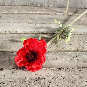 Medium Poppy 4.7''