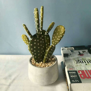 RESUP Tropical Artificial Cactus