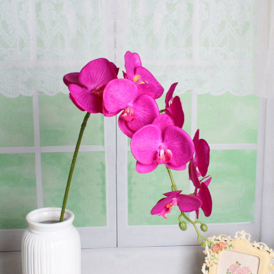 RESUP 9-head Real Touch Phalaenopsis Orchid