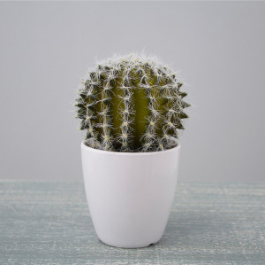 RESUP Artificial Cactus in 9cm Pot
