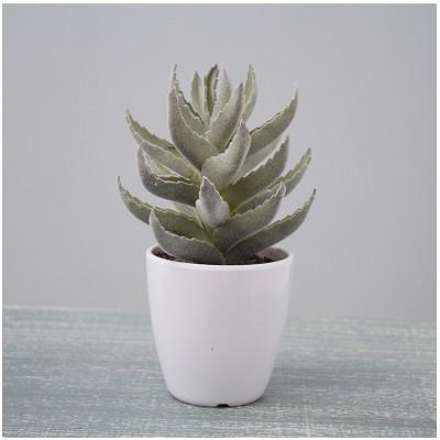 RESUP Artificial Cactus Succulent - 18cm Tall