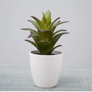 RESUP Artificial Cactus Succulent - 17cm Tall