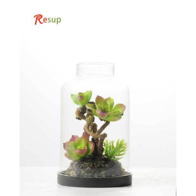 RESUP Artificial Desert Plant in Grass Pot 15cm Tall