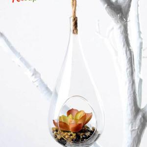 RESUP Artificial Succulent in Glassware 16cm Tall
