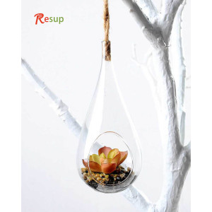 RESUP Artificial Succulent in Glassware 16cm Tall