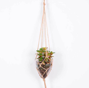 RESUP Artificial Hanging Succulent in Glassware 12cm Tall