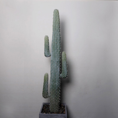 RESUP Tall Artificial Cactus bonsai for Living Room Decoration0142 77.6'' Tall Artificial Cactus Potted Wholesale China Factory