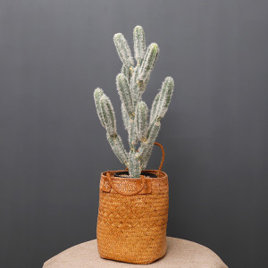 RESUP Artificial Cactus bonsai in Plastic Pot 0143 24.8'' Tall Artificial Cactus Nordic Style Wholesale China Factory