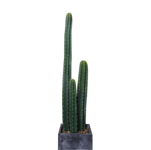 RESUP Artificial Cactus in Pot 0434 59.2'' Tall Indoor Cactus Plants Wholesale China Factory