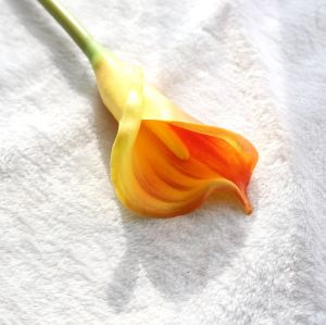 RESUP Real Touch Calla Lily 0523 26.8'' Tall Calla Lili Artificial Wholesale China Factory