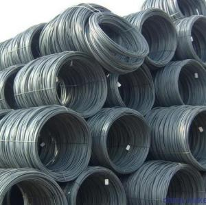 Steel Wire Rod in coils
