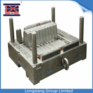 Longxiang Plastic injection Auto mould
