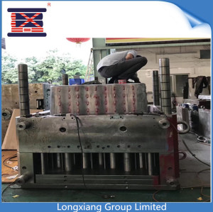 Longxiang HASCO standard mould with hot tip injection by 2800ton injection machine tooling