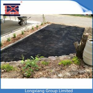 Longxiang Plastic Paving Grid