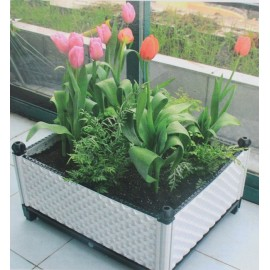 Garden bed Raised garden bed Elevated planter box
