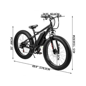 Electric Fat Tire Bicycle Beach Snow Crusier Bike