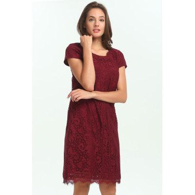 zhAjh Womens 100% Polyester Lace Round Neck Shift Dress with Lace Trim
