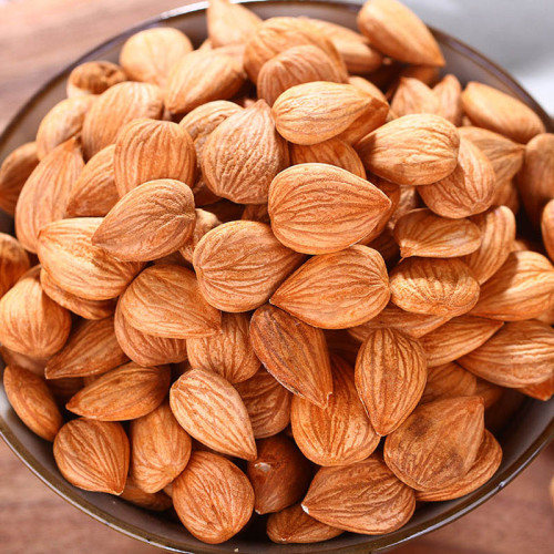 Bitter Apricot Kernels China Supplier