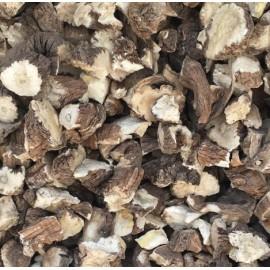 Organic Raw Dandelion Root TARAXACUM OFFICINALE