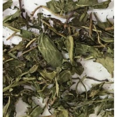 Raw Organic Dandelion leaf