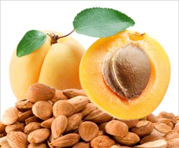 Fresh Bitter Raw Apricot Seeds 100% Natural