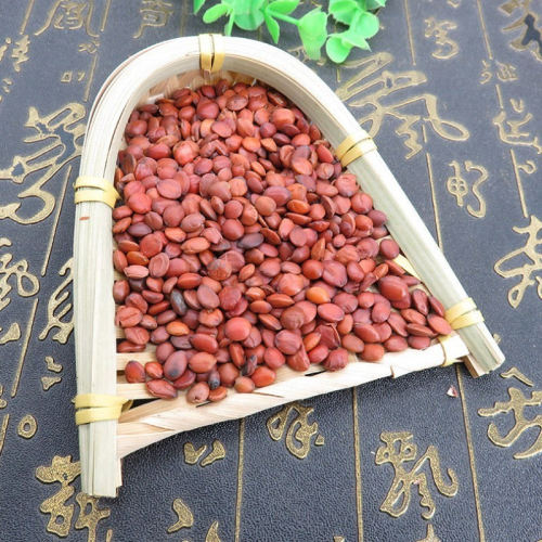 Organic Spina Date Seeds Supplier Suan Zao Ren From China