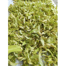 Lack of stock for Linden Flowers
