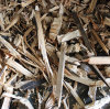 WOOD SHREDDER: WASTE WOOD THE MOST VALUABLE RESOURCE IN THE FUTURE