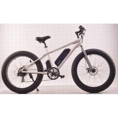 26*4.0 FAT E-bike disc  brake 36V 250W