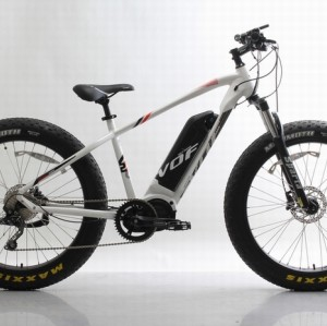 48V 750W 26 inch fat electric bike,disc brake