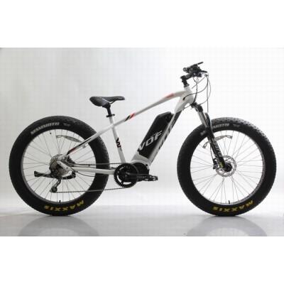 48V 750W 26 inch fat electric bike,disc brake