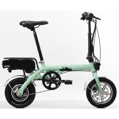 14 inch disc brake folding E-bike  350W 48V 12AH