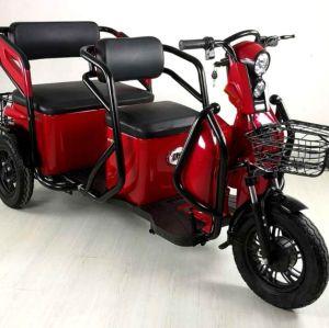 Behindertes Dreirad / elektrisches Dreirad für Behinderte 48V 650W
