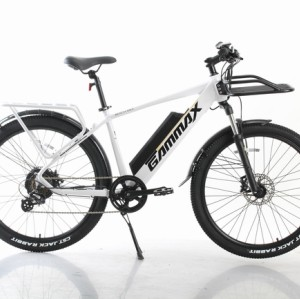 Trekking Electric Bike/26 Inch Aluminium 6061/Suspension fork/Disc brake/350W/36V 15.6Ah