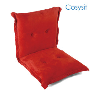 CosySit  Living Room Leisure Folding Floor Sofa Chair With Back Support & button beading