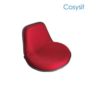 Cosysit Special apple shape floor seat living room recliner chair