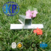 China Factory Direct Sale Welded ERW Galvanized Steel Pipe Square