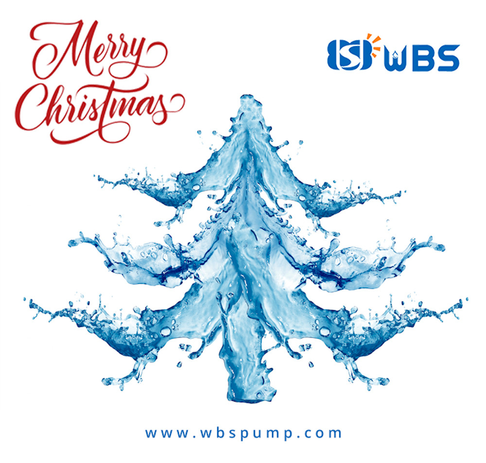 MERRY CHRISTMAS FROM THE WBS TEAM