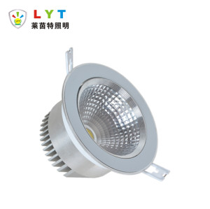 adjustable down light