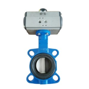 China Supplier wafter and lug concentric butterfly valve for water\oil\gas