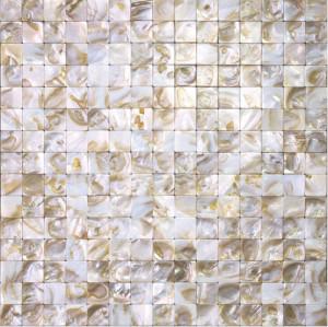 Decorative Mosaic Tile, seamless Colorful shell Mosaic