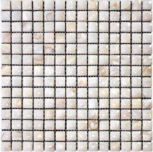 3D Natural River shell Mosaic Tile