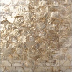 freshwater shell mosaic