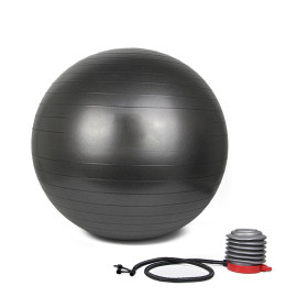 ProCircle Therapy Yoga Ball Exercise Ab Workout