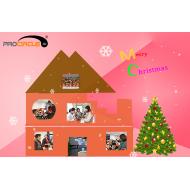 We Wish You Merry Christmas!