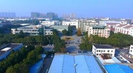 Dalian Sertag Technology  Co.,Ltd