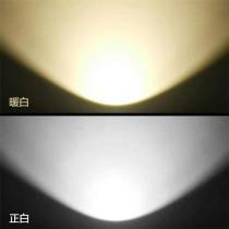 Indoor Stage Light LED COB 100W/200W PAR Can Light